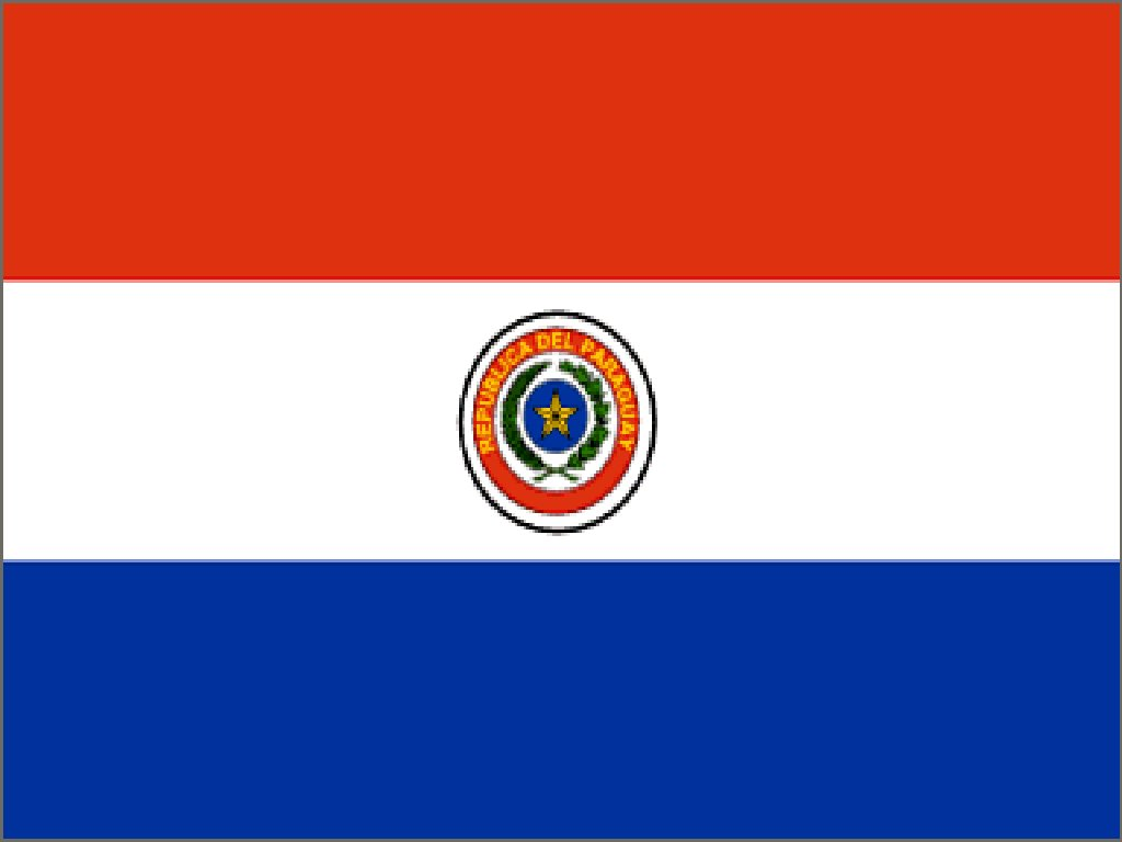 Paraguay's flag